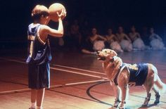 Are you hankering for some of the best dog movies to watch? Dog movies have various genres and plots, but one thing remains the same: dogs are the main or secondary stars. Basketball Movies, Love And Basketball, Air Bud Movies, Golden Retriever Names, Golden Retrievers, Kevin Zegers, Famous Dogs, Famous People, My Buddy