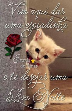 Boa noite Portuguese Quotes, Jolie Phrase, Beautiful Love, Happy Day, Good Night, Animals And Pets, Betta, Place Card Holders, Emoticon