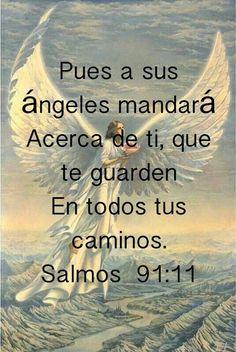 """Los ángeles estan a nuestro servicio. No te imaginas la protección que tú tienes, y eso no se dio sólo antes, cuando en el foso del fuego fueron protegidos por ángeles o cuando Pedro fue sacado de la cárcel o cuando un ángel cerró la boca de los leones para proteger a Daniel. Eso fue antes pero ahora los ángeles son numerosos y poderosos para protegernos a nosotros porque los hijos del Señor.. El Salmo 34: 7 dice:""""El ángel de Jehová acampa alrededor de los que le temen"""".."""