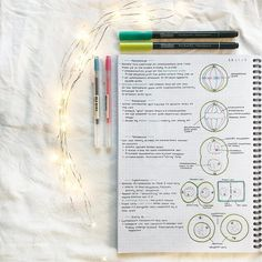 (Meiosis part therese School Organization Notes, Study Organization, Mitosis, College Notes, School Notes, Pretty Notes, Good Notes, Minimalist Bullet Journal, Pretty Handwriting