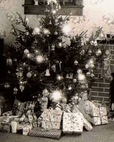 Vintage Christmas Tree photo..... Note the Christmas stocking hanging by the fireplace.