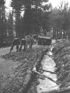 INGÉNIEURS réparent un chemin dans la forêt de Hurtgen, 25 novembre ENGINEERS REPAIR A ROAD in the Hurtgen Forest, 25 November