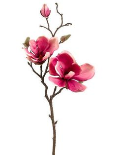"""Faux Magnolia Spray in Lavender Pink and Cream 3-5"""" Blooms x 19"""" Tall"""