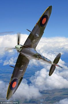 Wingspan: Mk IX Spitfire MH434 (pictured) is one of the most famous Spitfire's still flying