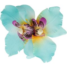 Blue pastel hibiscus flower ($11) ❤ liked on Polyvore featuring flowers, fillers, blue fillers, blue, backgrounds, accessories, jewelry, effect and women's jewellery