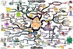 weight management mind map adam sicinski Weight Management