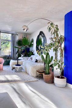 Im Wohnzimmer von mehr.von.mia sorgen Pflanzen für tropische Stimmung. Das kuschelige Sofa und die farbenfrohen Deko-Details peppen den Raum auf. Eclectic Decor, Modern Decor, Decorating Your Home, Diy Home Decor, Different House Styles, Geometric Furniture, Fireplace Cover, Boho Stil, Gold Walls
