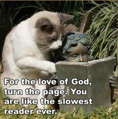 slow reader