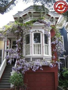 Gorgeous Chocolate Box House...but sadly the Wisteria has such a short flowring period so this house must look a little scanky most of the time.