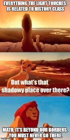 Simba Shadowy Place Meme | EVERYTHING THE LIGHT TOUCHES, IS RELATED TO HISTORY CLASS MATH, IT'S BEYOND OUR BORDERS. YOU MUST NEVER GO THERE. | image tagged in memes,simba shadowy place | made w/ Imgflip meme maker