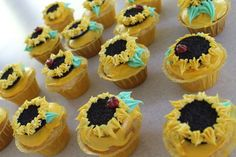 sunflower cupcakes on a bright sunny day!