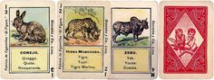 Animals Quartet cards, Peru, early 1900s Game Cards, Card Games, Fortune Telling Cards, Peru, Personalized Items, Animals, Hyena, Rhinoceros, Turkey