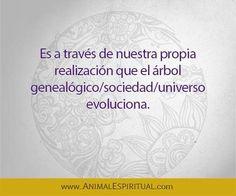 ... Es a través de nuestra propia realización que el árbol genealógico/sociedad/universo evoluciona.
