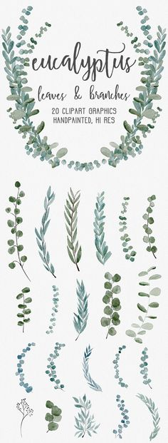 Floral Bouquet Clipart - Watercolor Clip Art flower PNG files - with white roses, thistles and eucalyptus leaves Wreath Watercolor, Watercolor Leaves, Floral Watercolor, Watercolor Lettering, Watercolor Landscape, Watercolor Painting, Simple Watercolor Flowers, Watercolor Water, Encaustic Painting