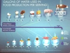 Do you know how much water is used to produce a serving of various of foods on the dining table? #LifeMed2015.