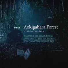 The Forest.  A supernatural thriller set in the legendary Aokigahara Forest, where Sara (Natalie Dormer) goes in search of her twin sister, who has mysteriously disappeared.