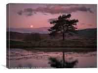 Full moon setting at sunrise in The Lake District, Canvas Print