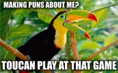 Making puns about me? Toucan play at that game.