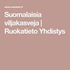 Suomalaisia viljakasveja   Ruokatieto Yhdistys