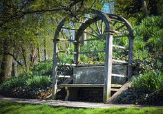 The Bench on the Hill - Dumbarton Oaks