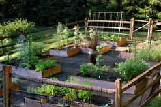 7 Gorgeous Raised Bed Vegetable Gardens   Off Grid World   Page 6