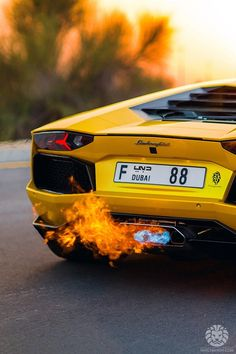 Let's cook! Lamborghini Aventador Lp700-4 Flamethrower edition