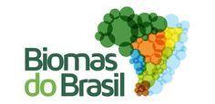 Biomas Brasileiros: exposição virtual