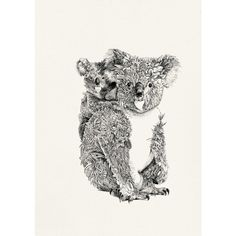 Koala and Joey by Nathan Ferlazzo. 20% of proceeds from this limited edition print are donated to the Australian Koala Foundation, helping to support their work to protect this precious Australia icon. Buy now at The SMH Shop.