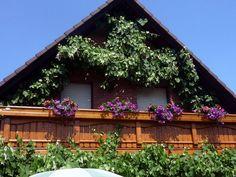 Natürlich bunt ums ganze Haus Bunt, Cabin, House Styles, Home Decor, Nature, Flowers, Homemade Home Decor, Cabins, Cottage