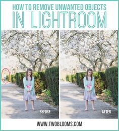 how to remove unwanted objects in Lightroom