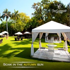 The lush Claridges lawns with it's private cabanas are the perfect spot for sumptuous Sunday brunches, quiet high teas or an evening beer!