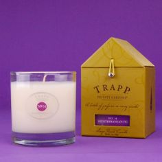 one of my favorite scents! Mediterranean Fig Large Trapp Candle No.14...Smells like pure HEAVEN!!
