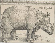1515.IMAGES - Dürer's woodcut Rhinoceros from a description and sketch sent from Rome after the first Rhino shown in Europe in 1000 years.