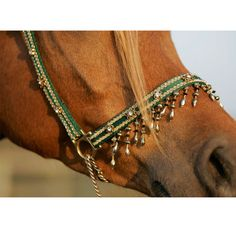 Green and Gold 'Exclusive' Halter - Click Image to Close