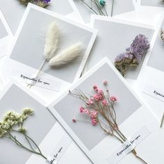 Greeting Card DIY with flowers Diy And Crafts, Paper Crafts, Summer Crafts, Fall Crafts, Kids Crafts, Flower Aesthetic, Aesthetic Grunge, Flower Cards, Dried Flowers