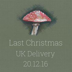 ✨🎄:: Last UK Delivery Dates || Online Orders :: 🎄✨ For guaranteed UK delivery before Christmas Day, order online before the end of tomorrow! 🎁✨ . . . ✏️ Lucy Shaw - The Bill Skinner Studio . . . #BillSkinner #illustration #mushroom #artist #pencilsketch #artistofinstagram #illustrator #toadstools #toadstooldrawing  #merrychristmas