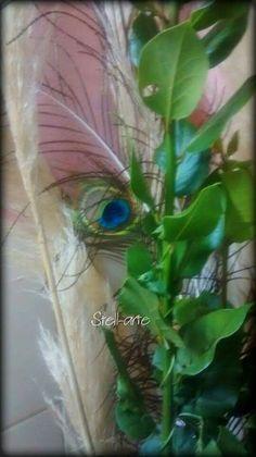 Cañas, pluma de pavo real y laurel ..