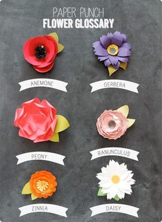 Amber's amazing post on how to make all sorts of paper flowers using very basic punches.