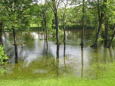 St. Joseph River, Mendon Michigan