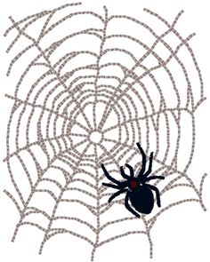A Spider & Her Web