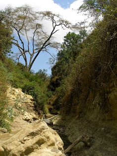 The gorge at Hell's Gate National Park, Kenya