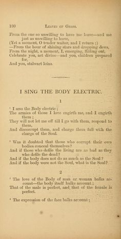 I sing the body electric essay