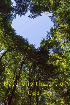 Fuerza Natural, Heart In Nature, Rabindranath Tagore, Beautiful Children, Hearts, Sky, Garden, Amor, Nature Photography