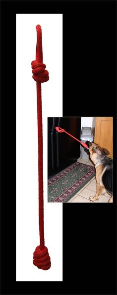 Service Dog Gear - Open Command Training Rope More