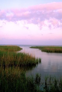 Texas Gulf Coast - photo from Texas Parks and Wildlife Department
