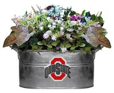 Image detail for -SportsMagick.com - Ohio State Buckeyes NCAA Planter Tub - more Sports ...