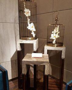 Perfect Interior Design Decor Decoration House Luxury Pool Riyadh Swimmingpool Saudiarabia Style Ig Masterpiece Idea