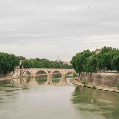 Ponte Garibaldi, Rome / photo by Tim Melideo