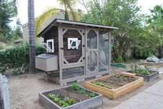 Reclaimed parts and a simple build. Plenty of fertilizer for the raised beds too! (Coops and Gardens can go together!) #HenHouse  www.FreeHenHousePlans.weebly.com