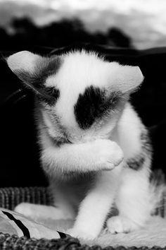 aku sedih karena aku kangen kamu ,....